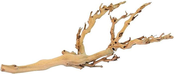 Top 9 Terrarium Decor Branch
