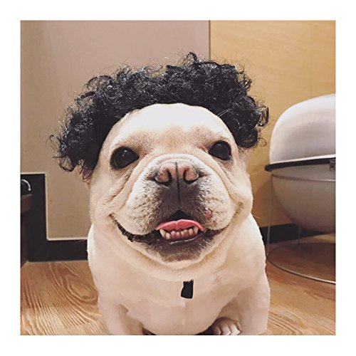 WeeH Wigs for Dogs Cats Costume Accessories Cosplay Pet Hair Funny Halloween Costumes for Large Medium Small Pets Red Wig (Black)