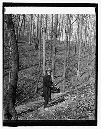 (Vintography Reproduced 16 x 20 Photo of: Dr. Walter Hough of Smithsonian in Arrowhead Quarry Rock Creek Park, 3/6/26 1926 National Photo Company)