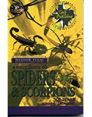 A Field Guide to Spiders & Scorpions of Texas