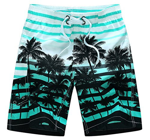 Men's Coconut Tree Printed Stripe Beach Shorts Swim Trunks Blue Asian 2XL