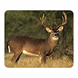 Whitetail Buck Deer Mouse Pad - Wildlife Theme Design - Stationery Gift - Computer Office Business School Supplies