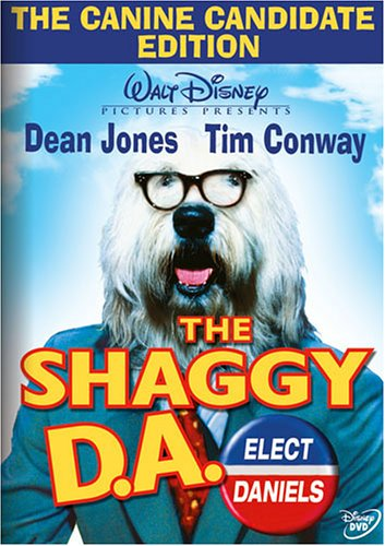 Shaggy Zebra - 5
