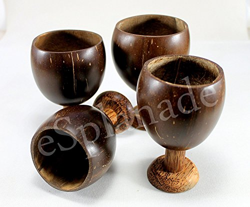 eSplanade Natural - 100% Natural - Coconut Shell Drinking Cups | Wine Glass | Champagne Glass with Wooden Base - Pack of 4