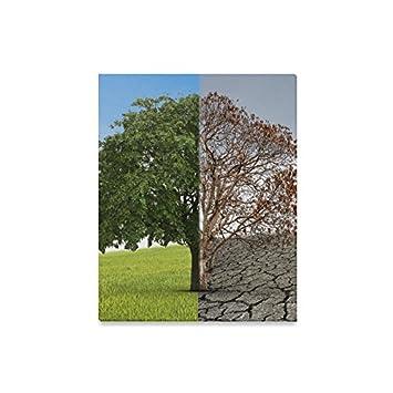 Amazoncom Interestprint Tree Of Life Half Alive And Half Dead Tree