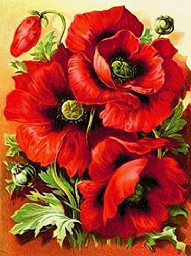 DIY 5D Diamond Painting by Number Kit, Full Drill Poppy Flowers Rhinestone Embroidery Cross Stitch Ornaments Arts Craft Canvas Wall Decor
