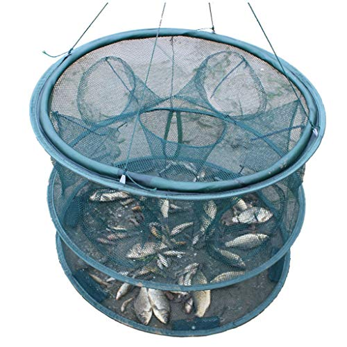 Sassafras Kids Fish - Fishing Net Fishing Tools Catch Fish Cages Folding Fishing nets Lobster nets Shrimp Cages Fish Hand Throw nets Small Fish net Round Outdoor Entertainment (Size : M)