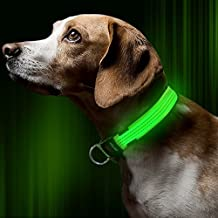 BSeen LED Dog Collar, USB Rechargeable Light Up Safety Pet Collar with 3 Glowing Modes & 3 Reflective Strings, Adjustable Soft Nylon Webbing, Great for Small Medium Large Dogs (Medium, Green)