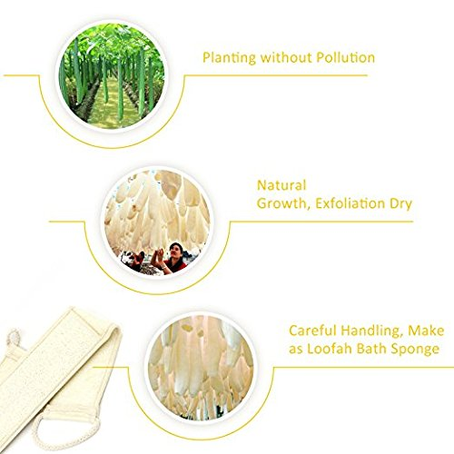 3 PCS Exfoliating Loofah Back Scrubber for Bath, Long Shower Luffa Sponge with Bar Soap Pocket, Body Sponge Scratcher with Natural Loufa for Men and Women by LERORO (Image #4)