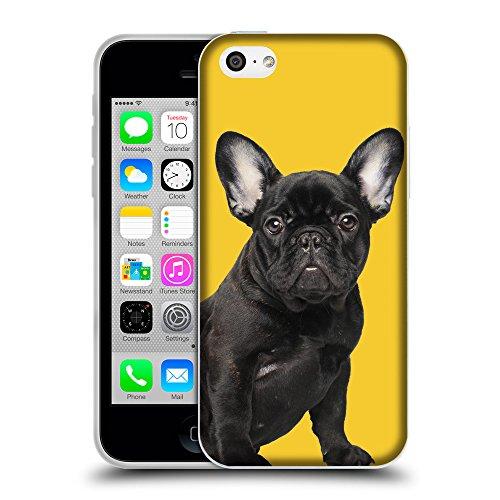 GoGoMobile Coque de Protection TPU Silicone Case pour // Q05630611 Bouledogue noir giallo banana // Apple iPhone 5C