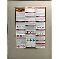 How To Read A Safety Data Sheet (SDS) Poster - Actual Photo