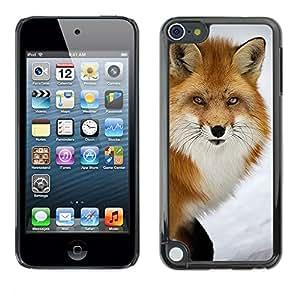 Caucho caso de Shell duro de la cubierta de accesorios de protección BY RAYDREAMMM - Apple iPod Touch 5 - Clever Animal Winter Nature