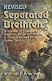 Separated Brethren : A Review of Protestant, Anglican, Eastern Orthodox and Other Religions in the United States, Whalen, William Joseph, 193170905X