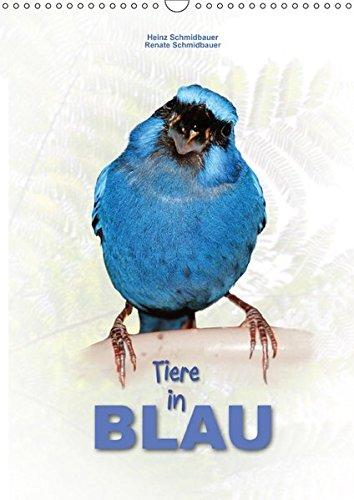 Tiere in Blau (Wandkalender 2018 DIN A3 hoch): Für ein blaues Ambiente - eine dekorative Ergänzung (Monatskalender, 14 Seiten ) (CALVENDO Tiere) [Kalender] [Apr 27, 2017] Schmidbauer, Heinz