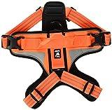 Hurtta Dazzle Harness, Orange, 24-32''