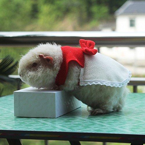 Cute Hamster Costumes Clothes Supply Halloween Glitter Pumpkin