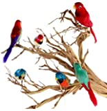 """Package of 6 Bright Color Tropical 6"""" Feathered Artificial Parrots"""