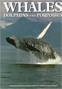 Book Whales, Dolphins, and Porpoises