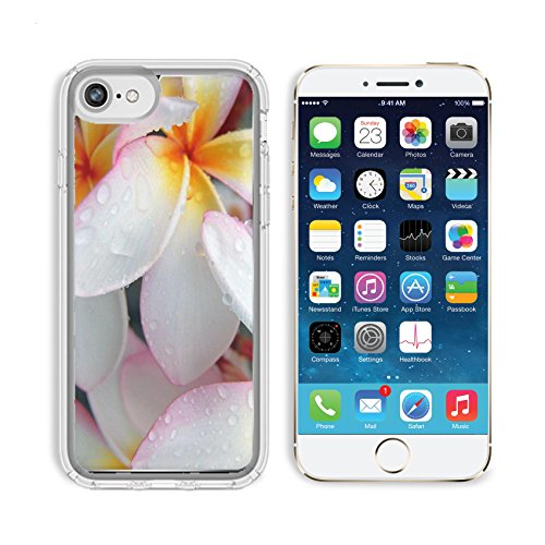 MSD Samsung Note 8 Clear case Soft TPU Rubber Silicone Bumper Snap Cases IMAGE of flower plumeria frangipani tropical blossom beauty nature pink plant petal summer beautiful bloom hawaii