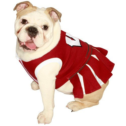 Pets First NCAA University of Wisconsin Badgers Cheerleader Dog Outfit, X Small -