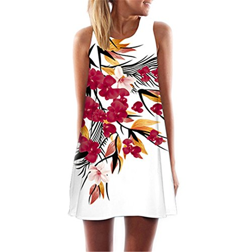Chiffon Dress Lady Short Dress Sleeveless Summer Dress Casual Floral Print Women Dresses Vestidos at Amazon Womens Clothing store: