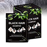 Black Hair Shampoo - Sevich Instantly Black Hair Dye, Natural Ingredients Hair Shampoo