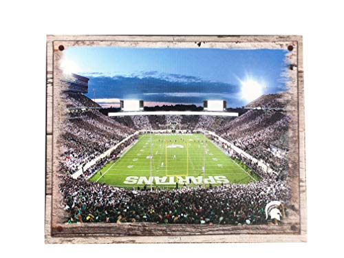 Artissimo Designs Plank Sports Stadium and Arenas Canvas Artwork (Michigan State - State Michigan Wall Spartans