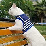 Yizhi Miaow Escape Proof Kitten Harness with Leash