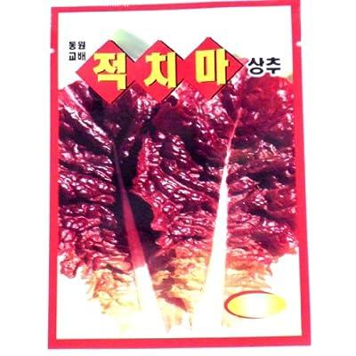 Red Leaf Lettuce Seeds Korean 3 Pack : Lettuce Plants : Garden & Outdoor