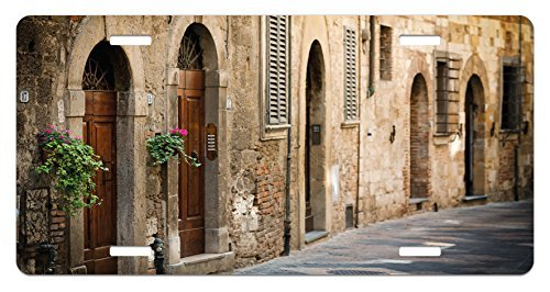 zaeshe3536658 Landscape License Plate, Street Wine Old Antcient House in Italy Tuscany on a Street with Floral Details, High Gloss Aluminum Novelty Plate, 6 X 12 Inches. by zaeshe3536658