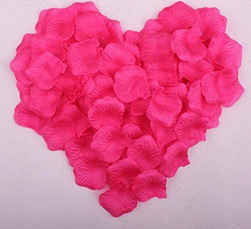 Ballg Wedding Flower Decoration Peach 5000pcs Rose