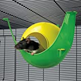 Savic Sputnik Rat House (11x10x7 inch) (Assorted)