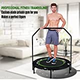 Best Fitness Trampolines - ANCHEER Foldable Rebounder Trampoline with Adjustable Handle, Exercise Review