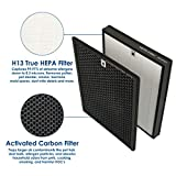 Flintar Premium True HEPA Replacement Filter