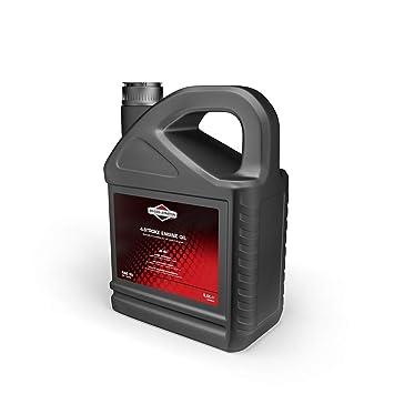 Briggs & Stratton BS-100009E aceite, Negro, 5,0 Litro