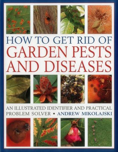 How to get rid of garden pests and diseases an - How to get rid of bugs in garden ...