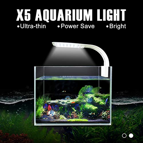 Senzeal X5 Virgo 24 LED Aquarium Light 10W Clip-on Lamp Aquatic Plant Lighting for 10-15inch Fish Tank (White) ()