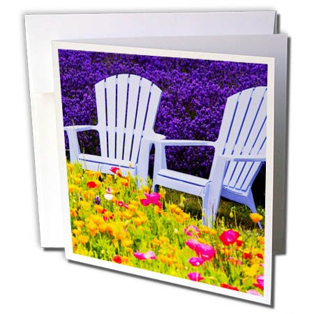 - 3dRose Danita Delimont - Gardens - USA, Washington, Adirondack Chairs in Field of Lavender and Poppies - 1 Greeting Card with Envelope (gc_279767_5)