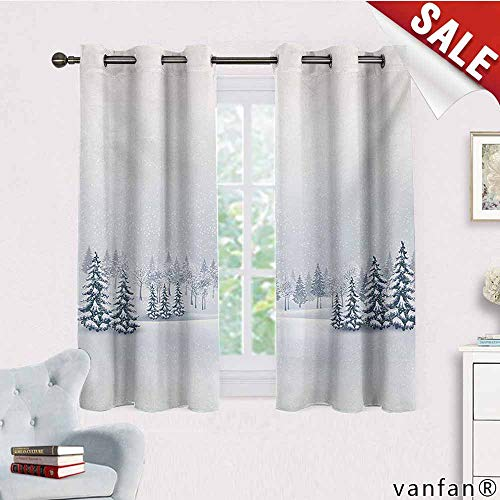 Big datastore Marvel Curtain Panel,Winter,Winter Scene in A Park with Trees Foggy Misty Blurry Ice Cold Freezing Weather Image,Custom for Girls/Boyswhite,W63 ()