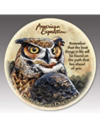 Win American Expedition CTST-147 Stone Coaster - Great Horned Owl -Set Of 4 saleoff