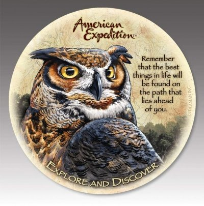 (American Expedition CTST-147 Stone Coaster - Great Horned Owl -Set Of 4)