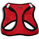 Best Pet Supplies, Inc. All Season Harness - Red Base (S), Red