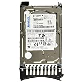 IBM SAS 16 MB Cache 300 GB 2.5-Inch Internal Hard Drive 81Y9670