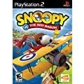 Snoopy Vs. The Red Baron from Namco
