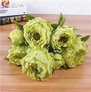 Venta caliente 10 PC / bolso Semillas Peony del jardín de flores Semillas y plantas en maceta interior Semillas Bonsai Peony para jardín fácil de cultivar 10