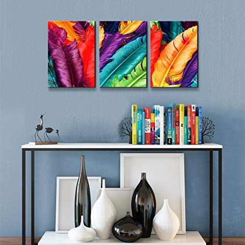 - Colorful Feathers Canvas Print Modern Still Life Art Picture Rainbow Color Artwork Framed Ready to Hang for Living Room Bedroom Home Decor 16x36 inches
