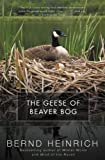 The Geese of Beaver Bog