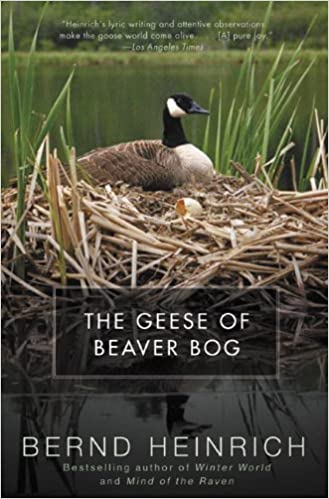 Book The Geese of Beaver Bog