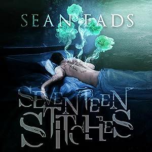 Seventeen Stitches Audiobook