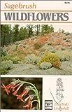 Sagebrush Wildflowers, J. E. Underhill, 0888391714